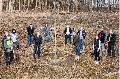 Die Hack AG unterstützt die heimischen Wälder