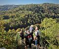 Der Westerwald-Verein bietet Herbstwanderung durchs Buchfinkenland