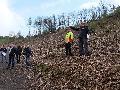 Wissen: Wiederaufforstung im Stadtwald gepaart mit touristischer Entwicklung