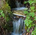 Wandern und Informieren: Der Westerwald-Verein lädt zur Wasserwanderung