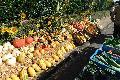 Der Bauernmarkt in Meinborn wurde von der Sonne geküsst