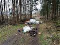 Unerlaubte Müllablagerungen im Wald