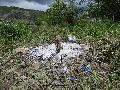 SGD Nord bittet um achtsames Verhalten in Naturschutzgebieten