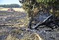 Flächenbrand bei Dreikirchen forderte viele Einsatzkräfte