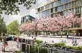 Uni Siegen in Oberstadt: Das bedeutet der geplante Umzug für die Stadt