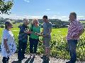 """""""Wahnsinns-Projekt"""": Grüne lehnen Ortsumgehung Weyerbusch ab"""