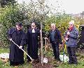 Evangelische Christen pflanzten �Lutherbaum�