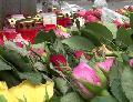 Zum Jahrestag des Germanwings-Absturzes legt Vater Gutachten vor