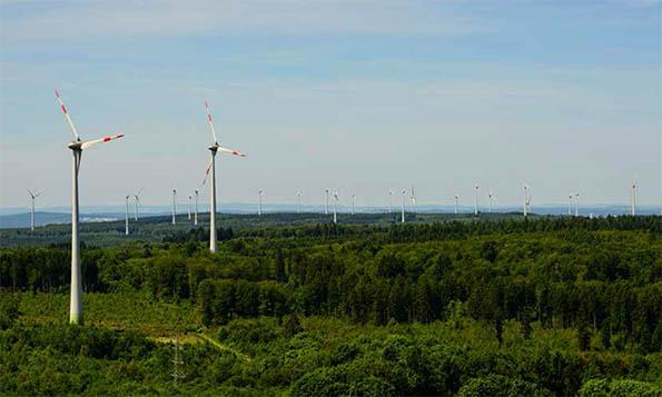"""""""Windkraftindustrie und Naturschutz sind nicht vereinbar"""""""