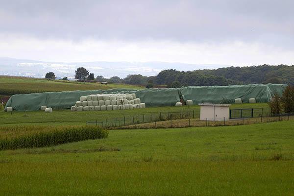 Illegale Ablagerungen im Wasserschutzgebiet Weidenhahn