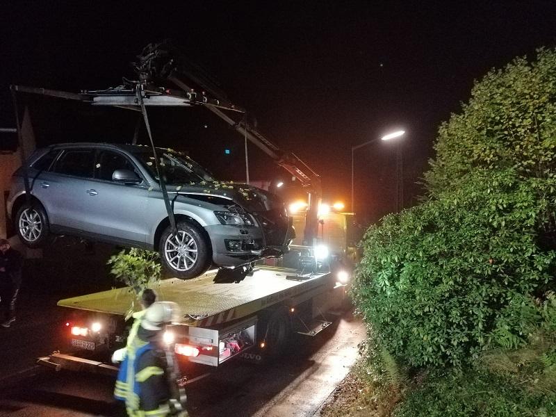 Das Auto kam in einem Gebüsch zum Stehen. (Fotos: RS Media)