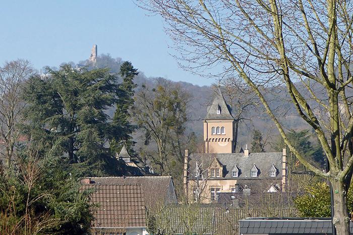 Villa Schaaffhausen und Park werden zum Leben erweckt