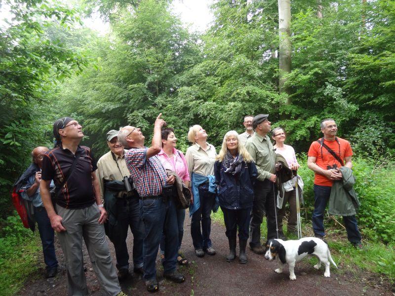 Naturerlebnisse wie hier bei einer Vogelstimmenwanderung will der Westerwald-Verein auch in diesem Jahr im Buchfinkenland wieder organisieren. Foto: privat