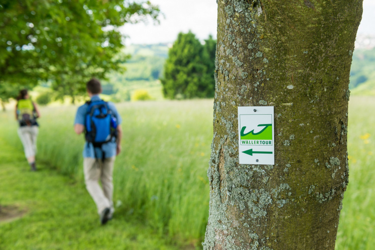 """""""Impulse digital"""": Wie läuft der Neustart im Westerwälder Tourismus?"""