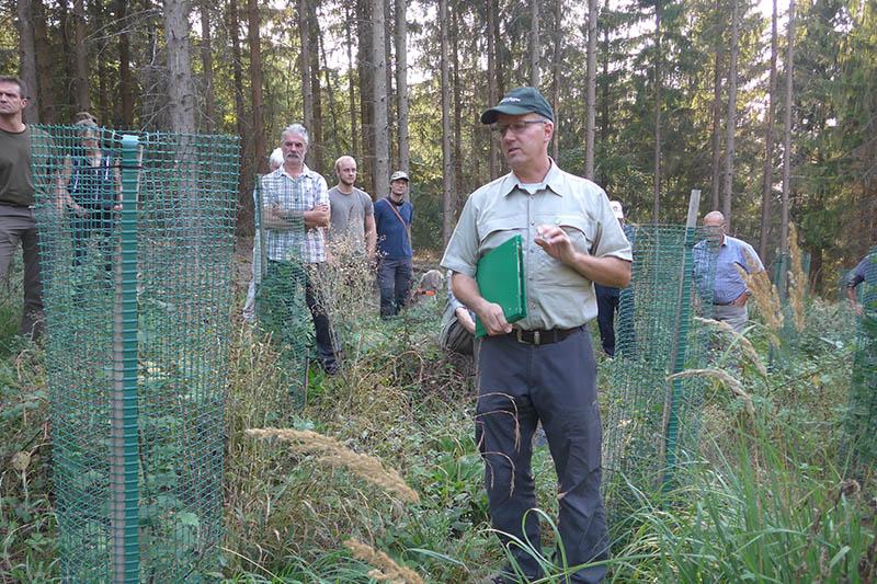 Revierförster Kirst: Neubegrünung von Wald will gelernt sein. Foto: Waldbauverein