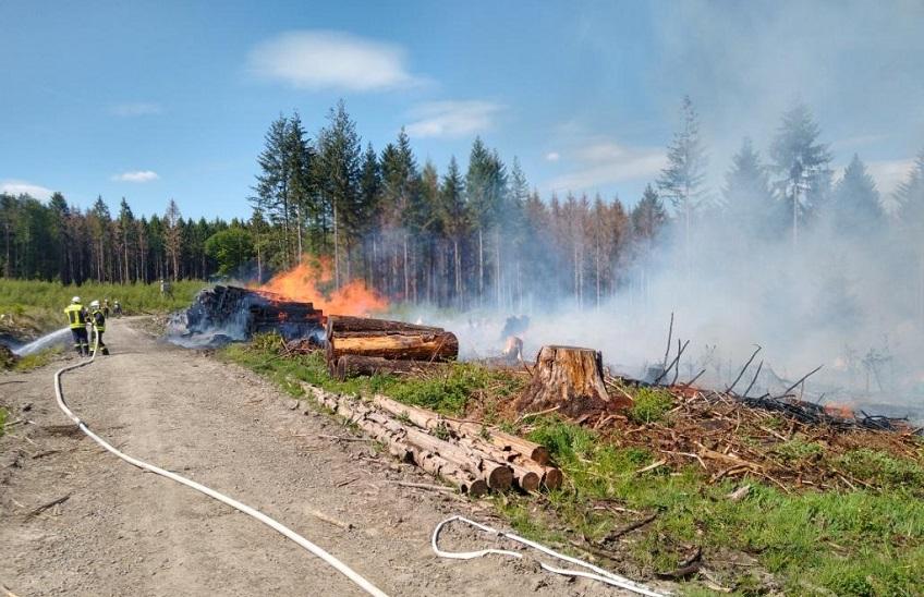Waldbrand in Hasselbach: Spaziergänger als Zeugen gesucht