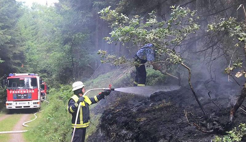 Schnell gel�scht: H�ttenwald zwischen Mudersbach und Brachbach brannte