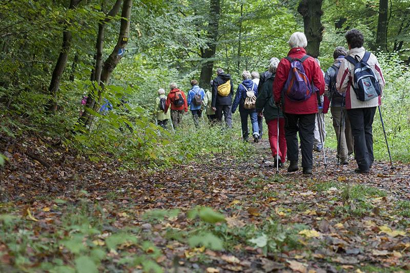 Kostenfreie geführte Wanderungen im Kannenbäckerland