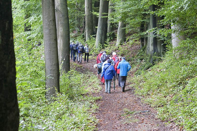 Naturpark Wandertag