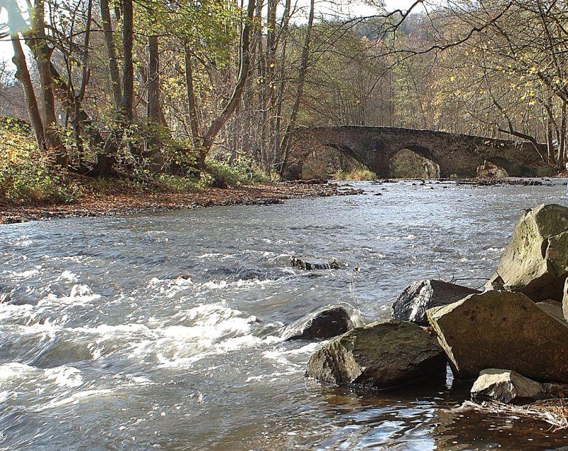 Wasserentnahme schadet Ökosystem Bach