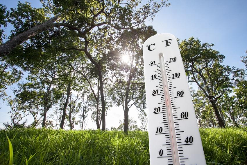 Sonnig und warm: Der Sommer ist im Westerwald angekommen