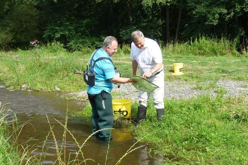 Wiesenbewässerungsgraben an der Nister reaktiviert
