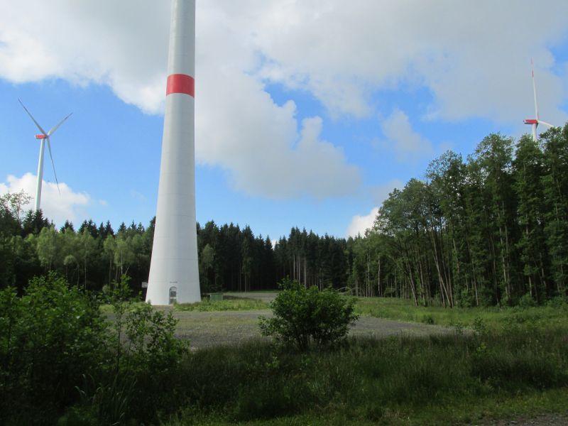 Gefahren für Rotmilane am Windpark Roter Kopf überprüft