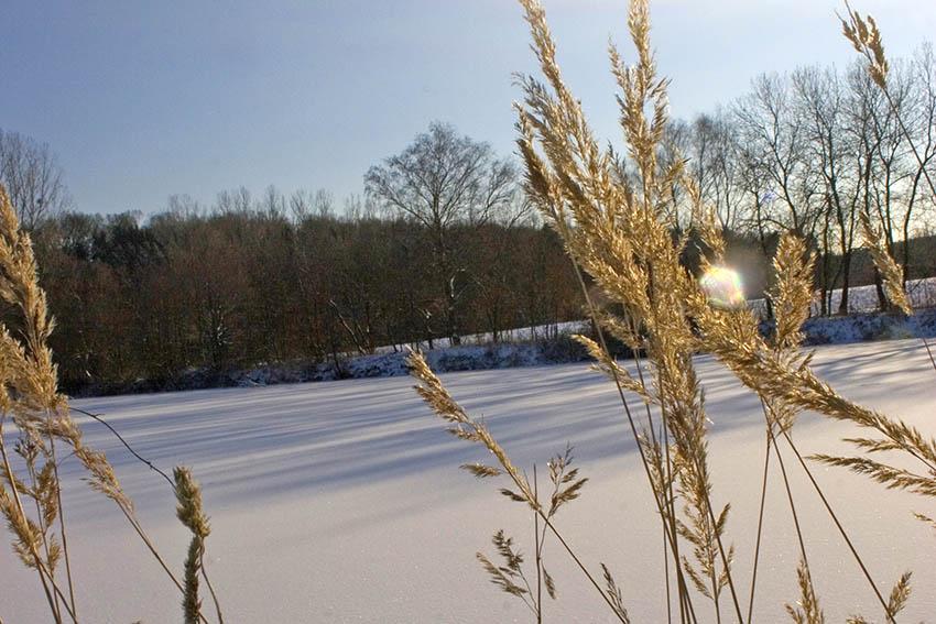 Am Sonntag kommt Schnee zu uns
