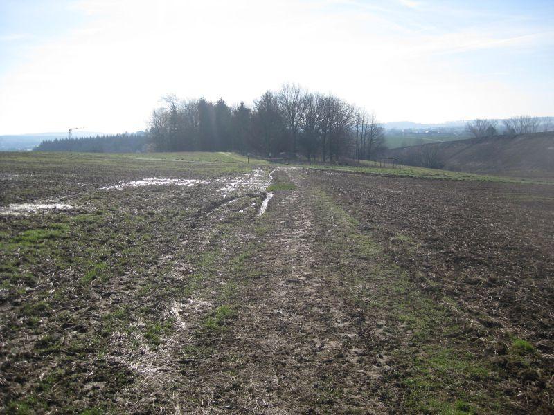 Wirtschaftsweg zwischen Montabaur und Dernbach wird befestigt