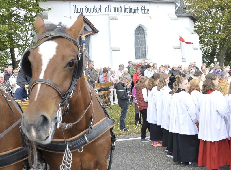 130 Pferde bei der traditionellen Pferdesegnung in Salz