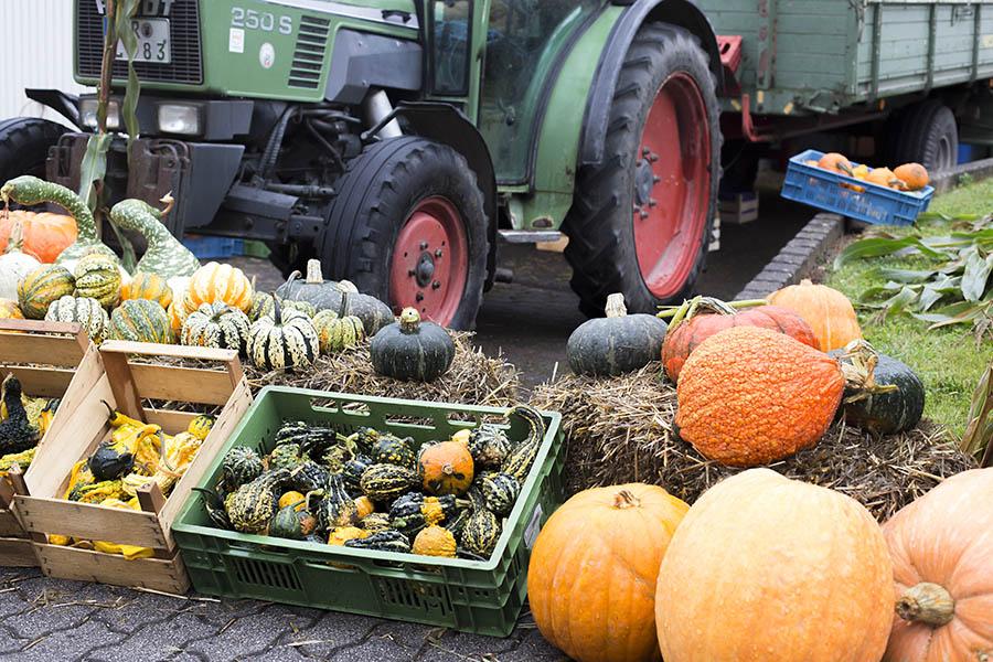 Jetzt zum Bauernmarkt in Meinborn anmelden