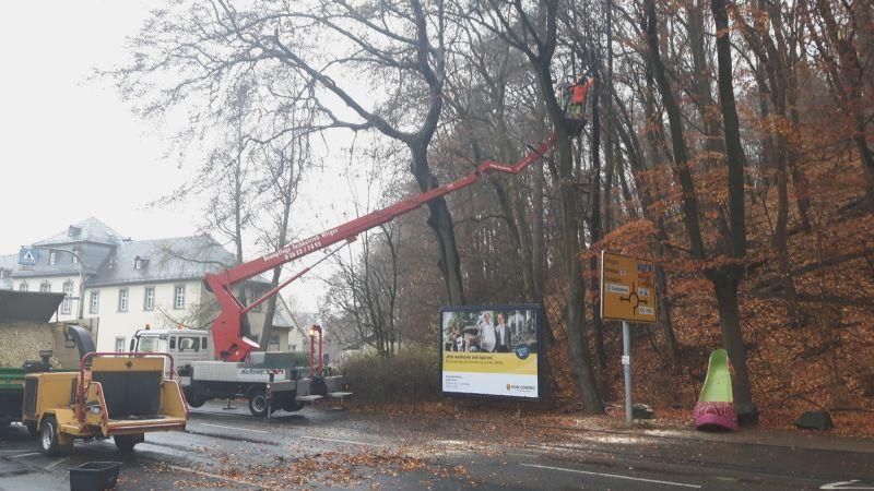 Der mittlere Teil der Bahnhofstraße wird für Baumpflegearbeiten gesperrt (Archivbild VG Montabaur)