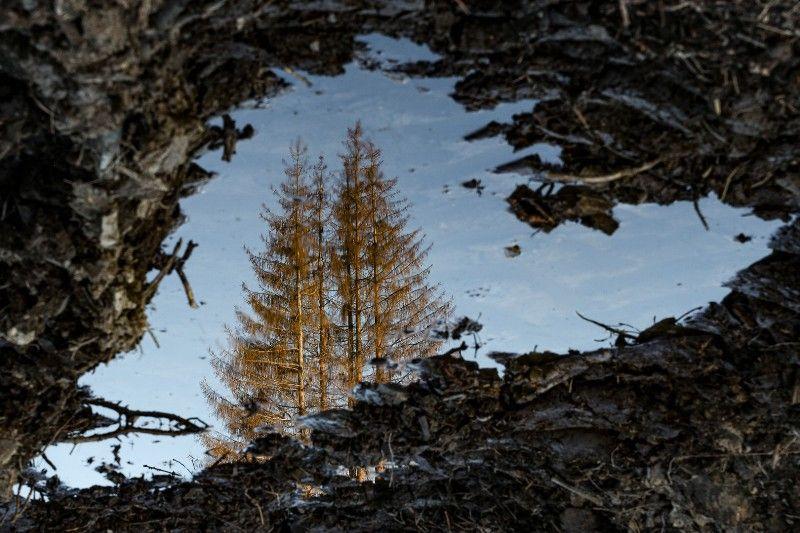Ausstellung im Internet: Fotos zeigen Schäden im Westerwald
