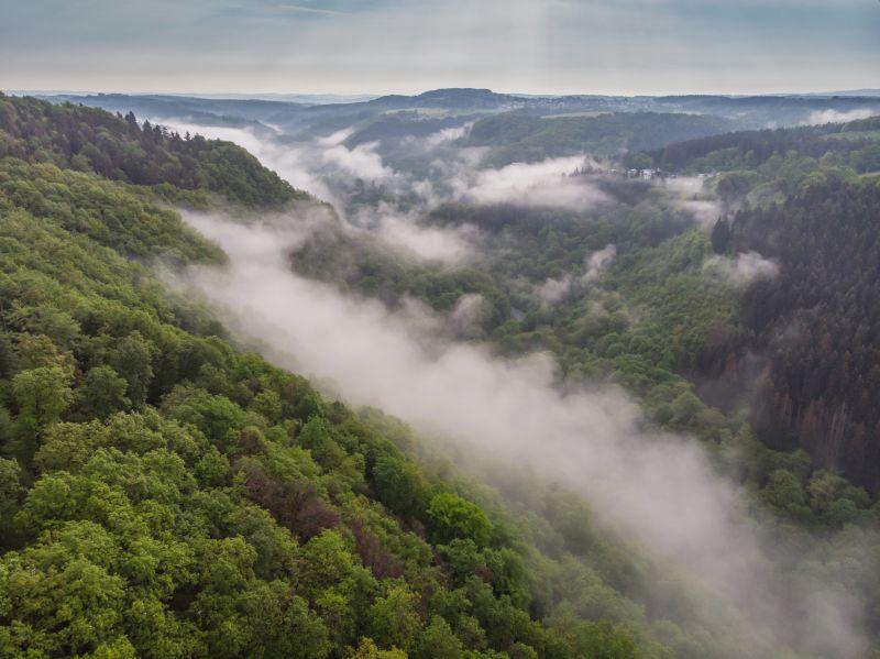 Wäller Tour Iserbachschleife: Premiumwandern im Naturpark Rhein-Westerwald