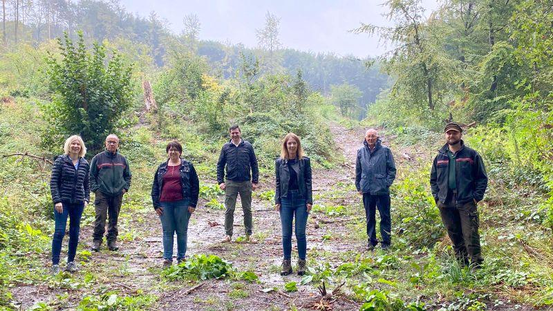 Westerwälder CDU-Landtagsabgeordnete fordern klares Bekenntnis zum heimischen Wald