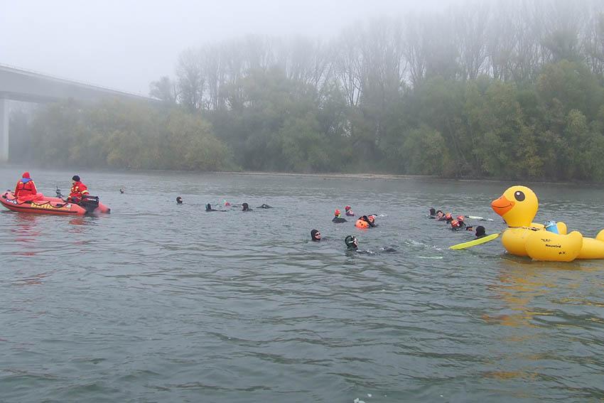 DLRG-Stromschwimmen im Rhein fand zum 46. Mal statt