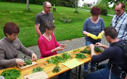 Kräuterkunde im Mittelalter - Exkursion in Horhausen