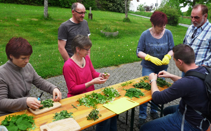 Kr�uterkunde im Mittelalter - Exkursion in Horhausen