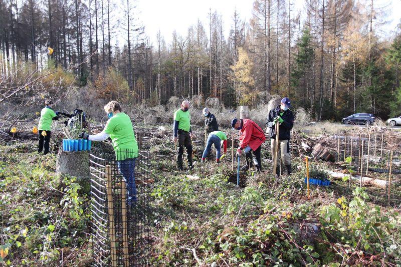 Baumpflanzaktion im Mörlener Gemeindewald