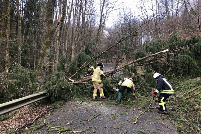 """""""Friederike"""" beschäftigt die Feuerwehren in der VG Asbach"""