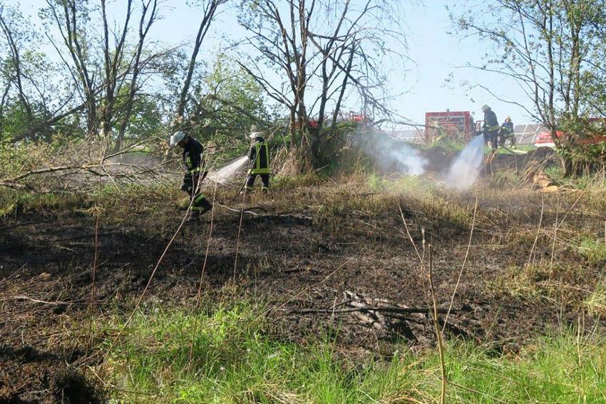 Feuerwehren löschen größeren Flächenbrand in Oberdreis