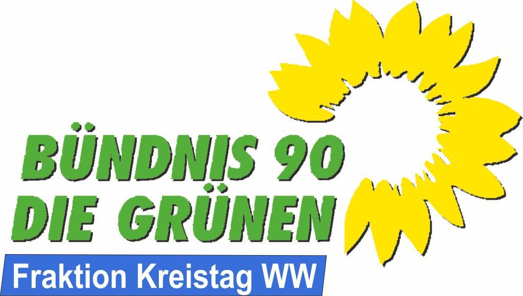 """""""GRÜNE-Fraktion"""" stimmt für Klimaschutz und digitale Infrastruktur"""