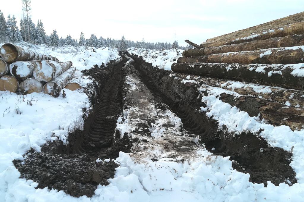 Harvester zerstören Quellbiotope im Hauser Wald und bei Westernohe