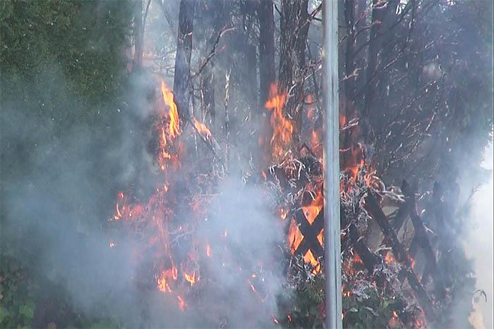 In Elgendorf brannte Hecke lichterloh