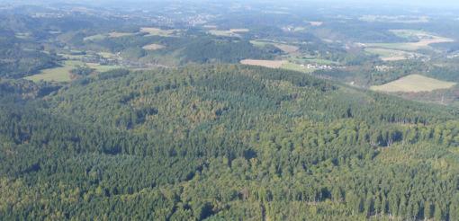 Altus-Klage: Verwaltungsgericht verhandelt �ber Windkraft auf dem H�mmerich