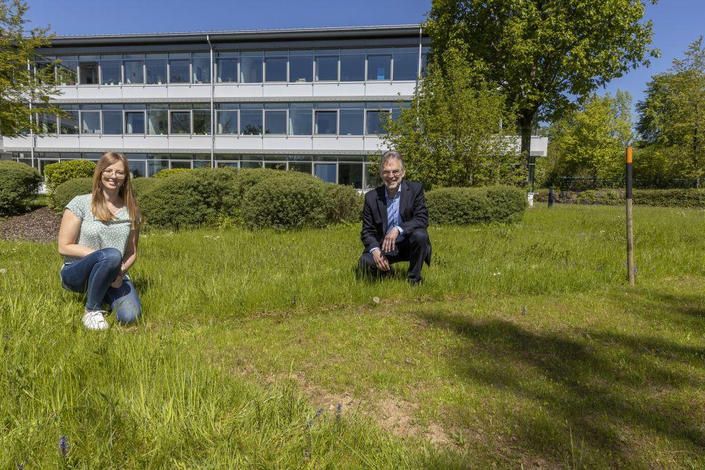 Klimaschutzmanagerin für Verbandsgemeinde Bad Marienberg