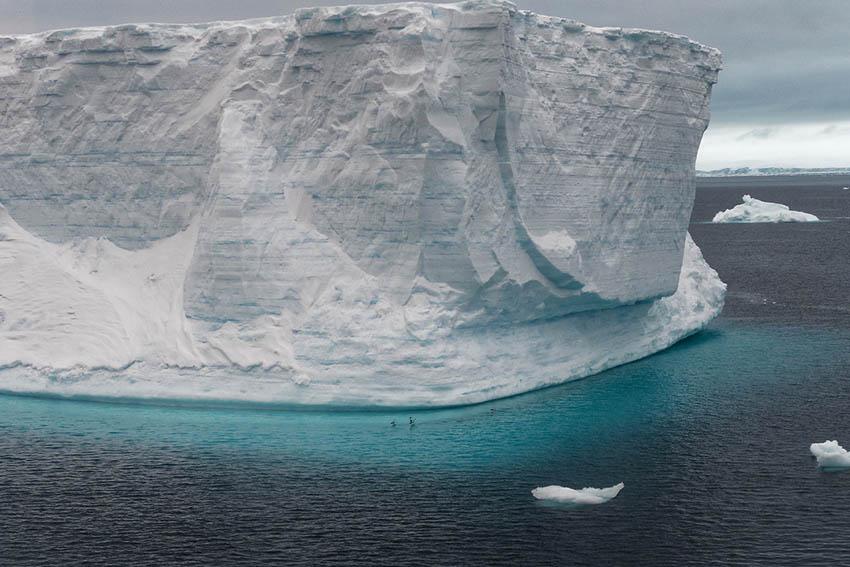 Reisebericht Antarktis – den Pinguinen auf der Spur