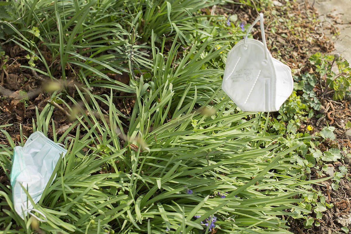 Corona-Müll gefährdet Wildtiere