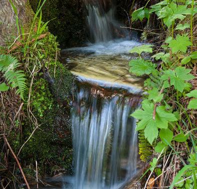 """Der Westerwald-Verein im Buchfinkenland lädt ein zu einer """"Wasserwanderung"""". Das Thema: """"Unser Wasser – von der Quelle bis zur Kläranlage"""". (Foto: Archiv WW-Kurier/Alan McFarland)"""
