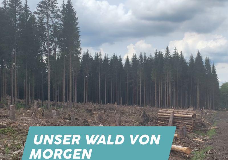 """Mittwoch Digtal: """"Unser Wald von morgen"""""""